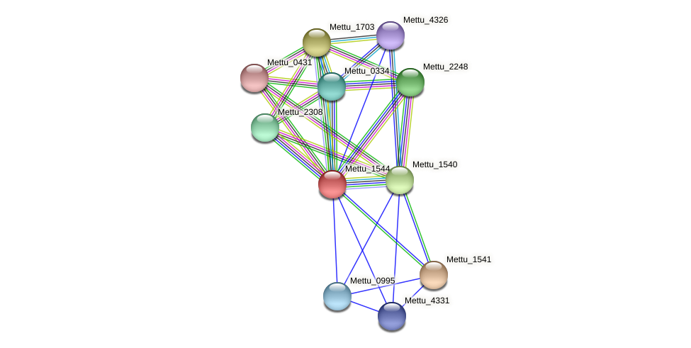 Mettu_1544 protein (Methylobacter tundripaludum) - STRING interaction network