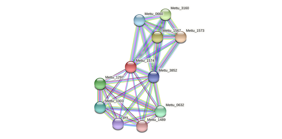 Mettu_1574 protein (Methylobacter tundripaludum) - STRING interaction network