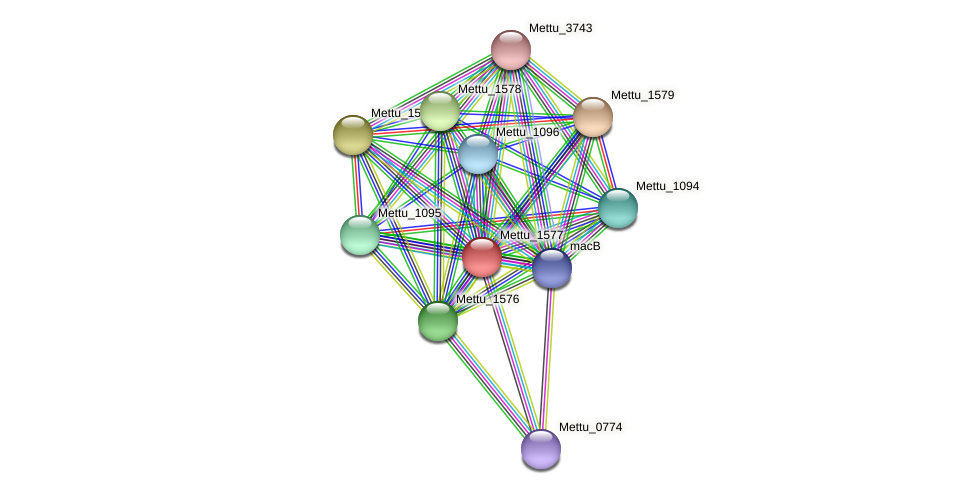 Mettu_1577 protein (Methylobacter tundripaludum) - STRING interaction network