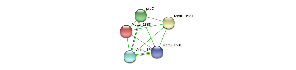 Mettu_1588 protein (Methylobacter tundripaludum) - STRING interaction network