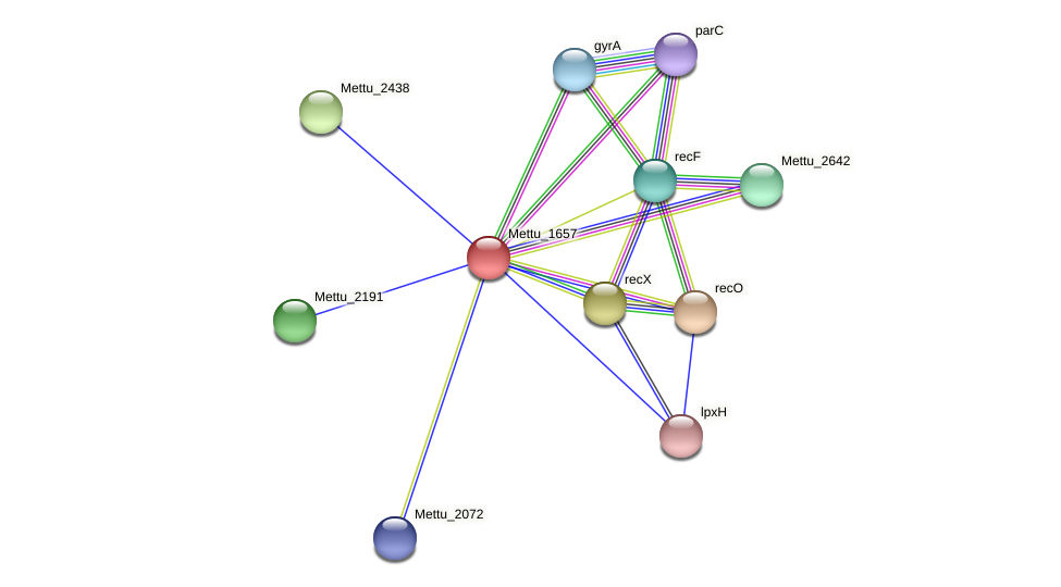Mettu_1657 protein (Methylobacter tundripaludum) - STRING interaction network
