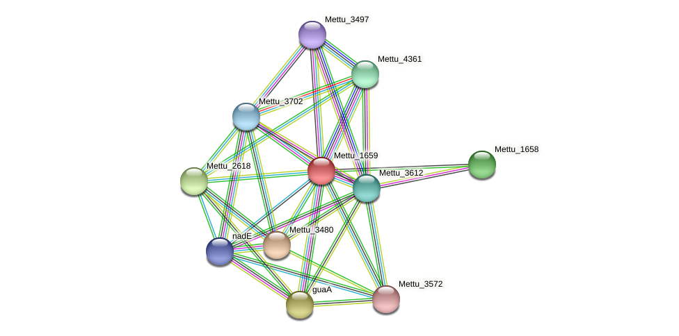 Mettu_1659 protein (Methylobacter tundripaludum) - STRING interaction network