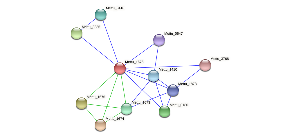 Mettu_1675 protein (Methylobacter tundripaludum) - STRING interaction network