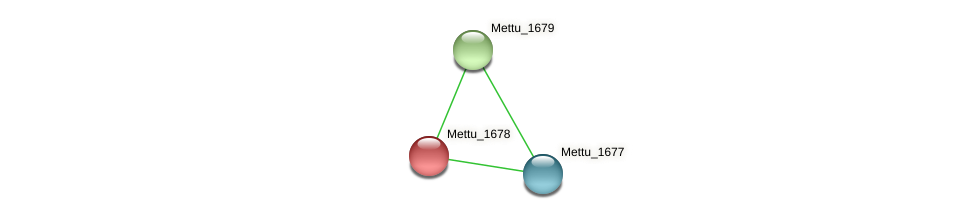 Mettu_1678 protein (Methylobacter tundripaludum) - STRING interaction network
