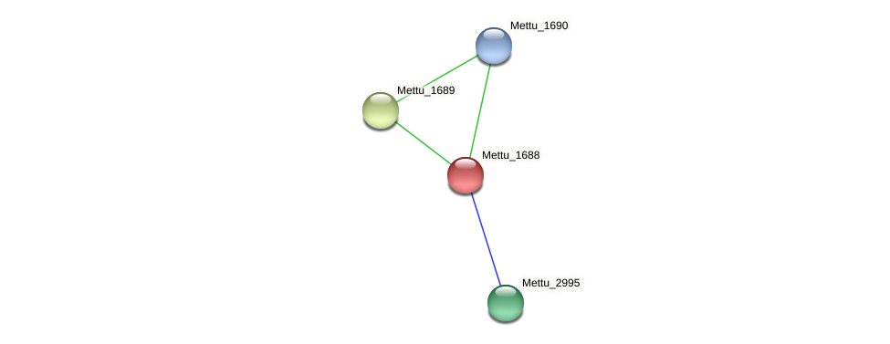 Mettu_1688 protein (Methylobacter tundripaludum) - STRING interaction network