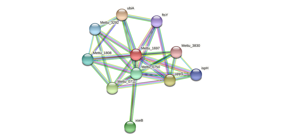 Mettu_1697 protein (Methylobacter tundripaludum) - STRING interaction network