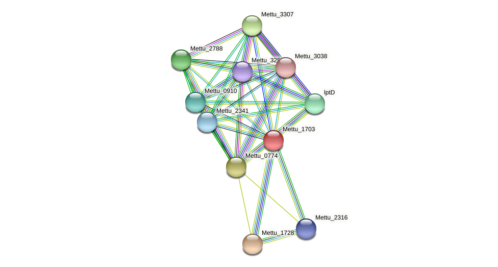 Mettu_1703 protein (Methylobacter tundripaludum) - STRING interaction network