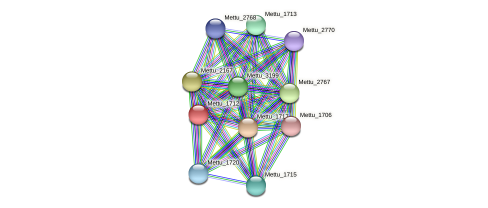 Mettu_1712 protein (Methylobacter tundripaludum) - STRING interaction network