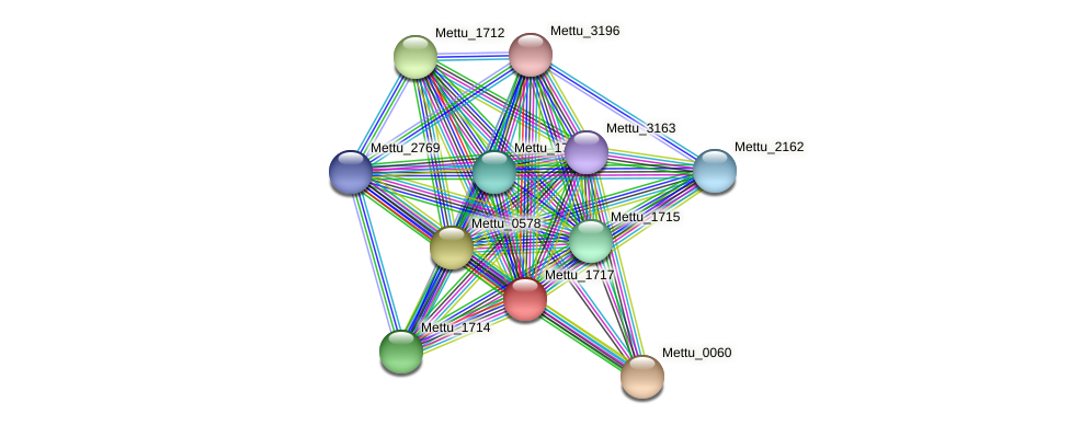Mettu_1717 protein (Methylobacter tundripaludum) - STRING interaction network
