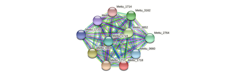 Mettu_1718 protein (Methylobacter tundripaludum) - STRING interaction network