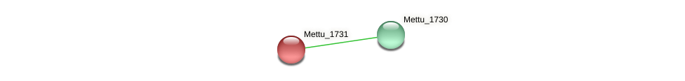 Mettu_1731 protein (Methylobacter tundripaludum) - STRING interaction network
