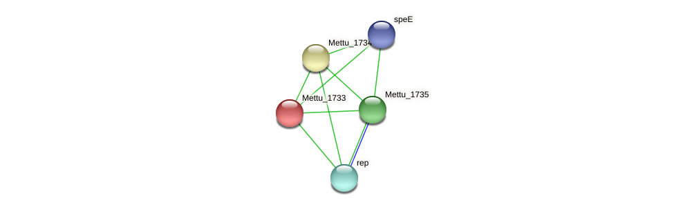 Mettu_1733 protein (Methylobacter tundripaludum) - STRING interaction network