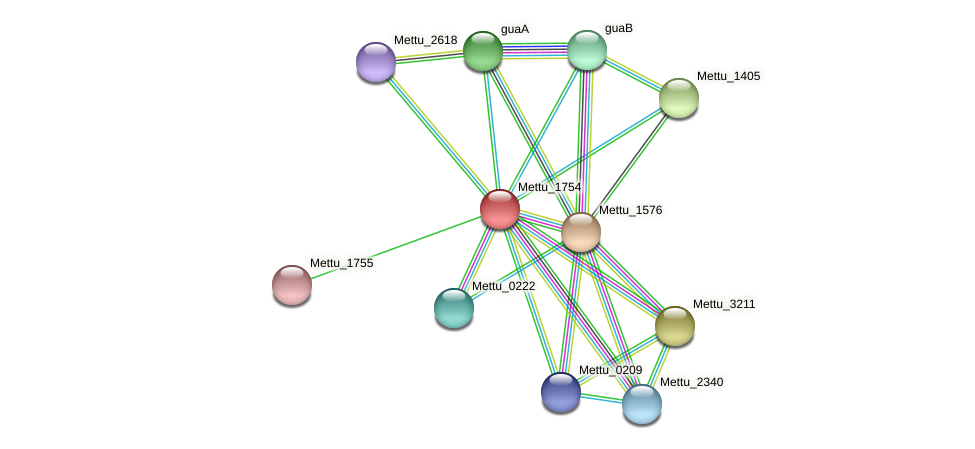 Mettu_1754 protein (Methylobacter tundripaludum) - STRING interaction network