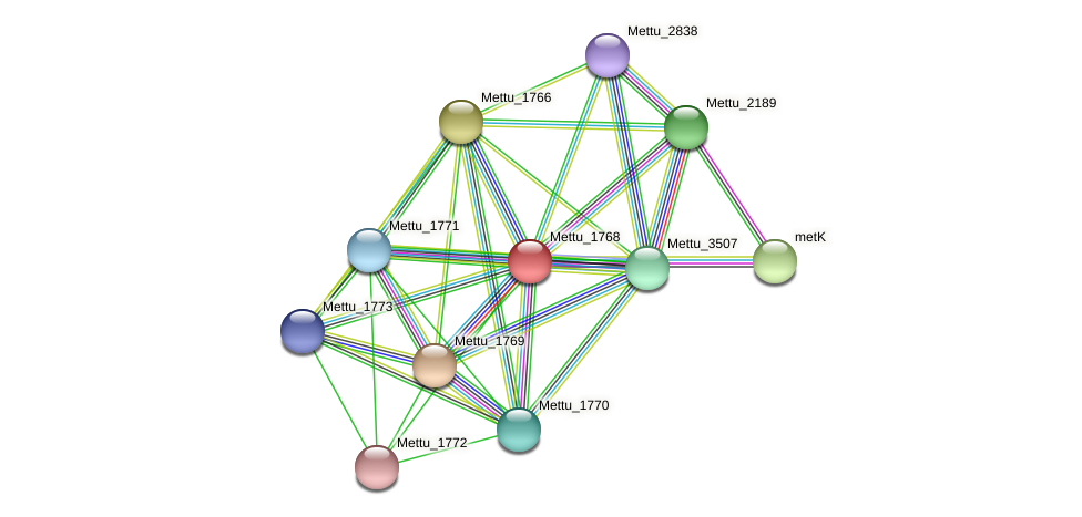 Mettu_1768 protein (Methylobacter tundripaludum) - STRING interaction network