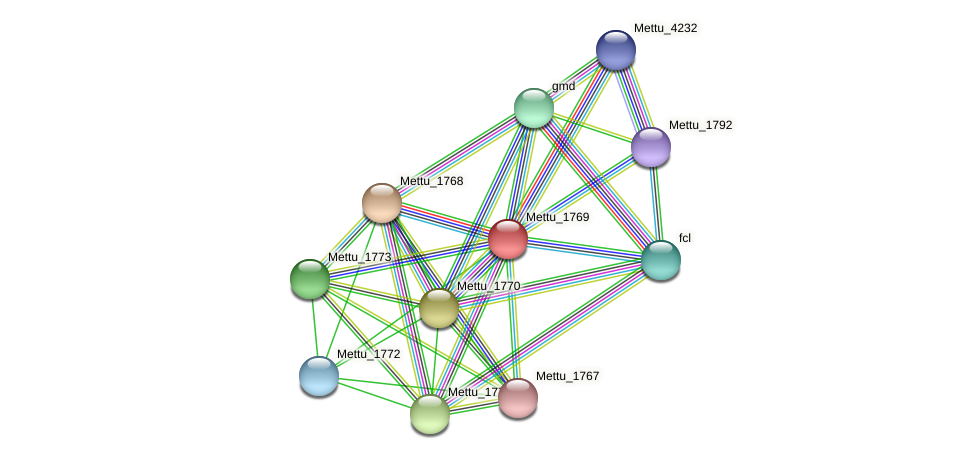 Mettu_1769 protein (Methylobacter tundripaludum) - STRING interaction network