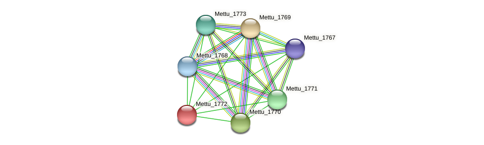 Mettu_1772 protein (Methylobacter tundripaludum) - STRING interaction network