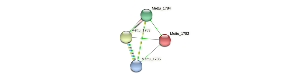 Mettu_1782 protein (Methylobacter tundripaludum) - STRING interaction network