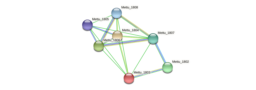 Mettu_1803 protein (Methylobacter tundripaludum) - STRING interaction network