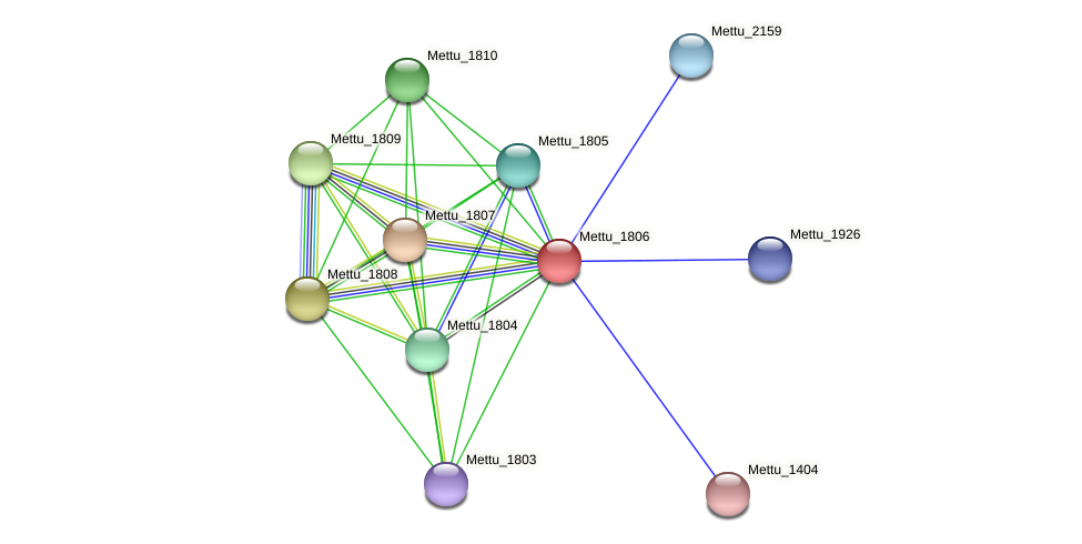 Mettu_1806 protein (Methylobacter tundripaludum) - STRING interaction network