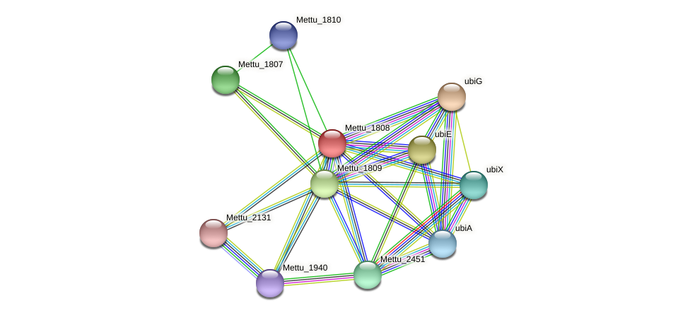 Mettu_1808 protein (Methylobacter tundripaludum) - STRING interaction network