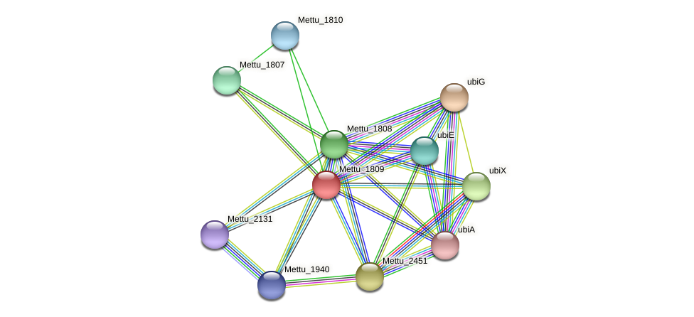 Mettu_1809 protein (Methylobacter tundripaludum) - STRING interaction network