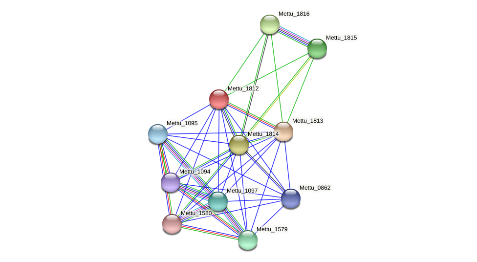 Mettu_1812 protein (Methylobacter tundripaludum) - STRING interaction network
