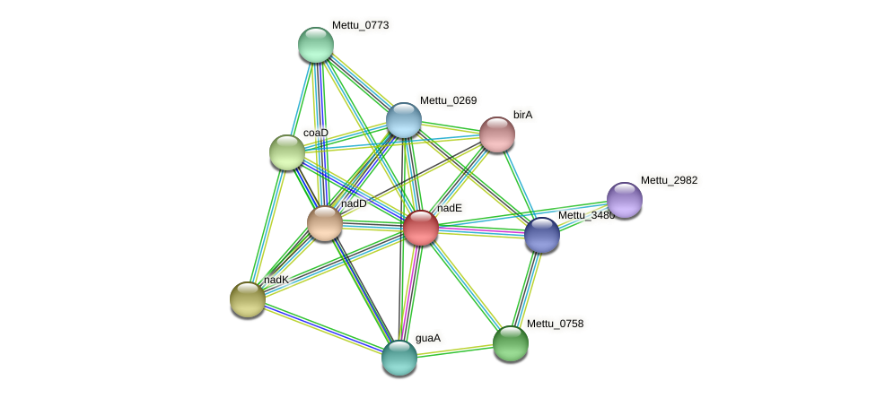 Mettu_1821 protein (Methylobacter tundripaludum) - STRING interaction network