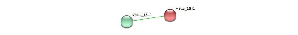 Mettu_1841 protein (Methylobacter tundripaludum) - STRING interaction network