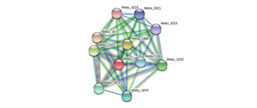 Mettu_1870 protein (Methylobacter tundripaludum) - STRING interaction network