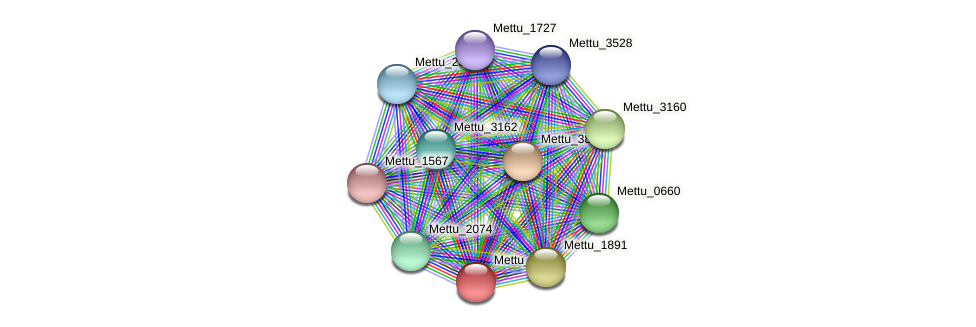 Mettu_1890 protein (Methylobacter tundripaludum) - STRING interaction network