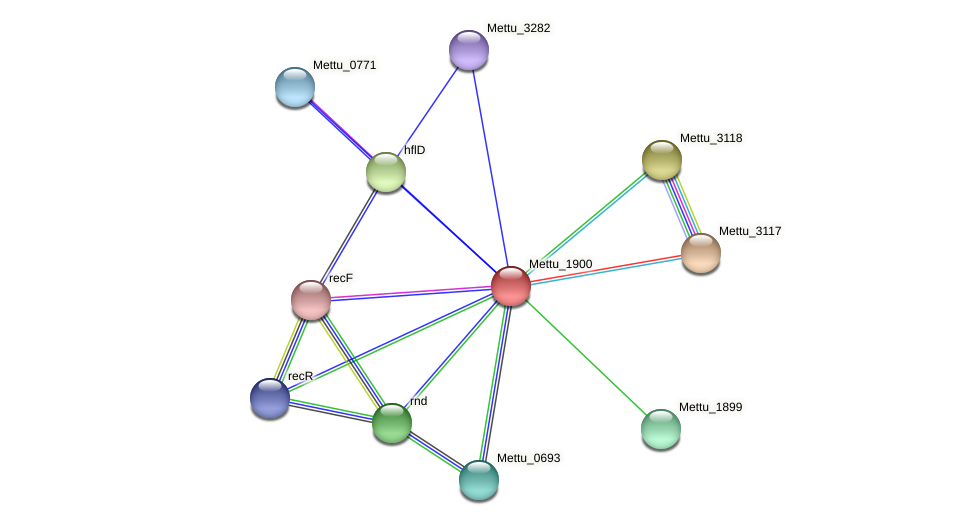 Mettu_1900 protein (Methylobacter tundripaludum) - STRING interaction network