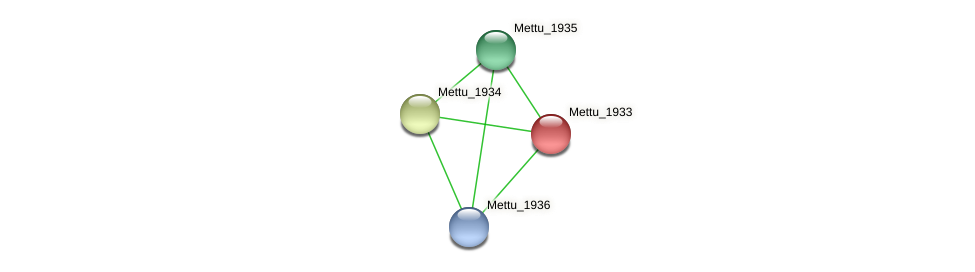 Mettu_1933 protein (Methylobacter tundripaludum) - STRING interaction network