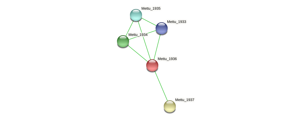 Mettu_1936 protein (Methylobacter tundripaludum) - STRING interaction network