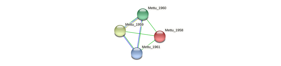 Mettu_1958 protein (Methylobacter tundripaludum) - STRING interaction network