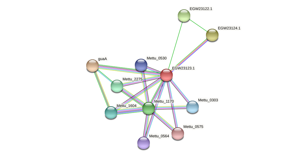 Mettu_1963 protein (Methylobacter tundripaludum) - STRING interaction network