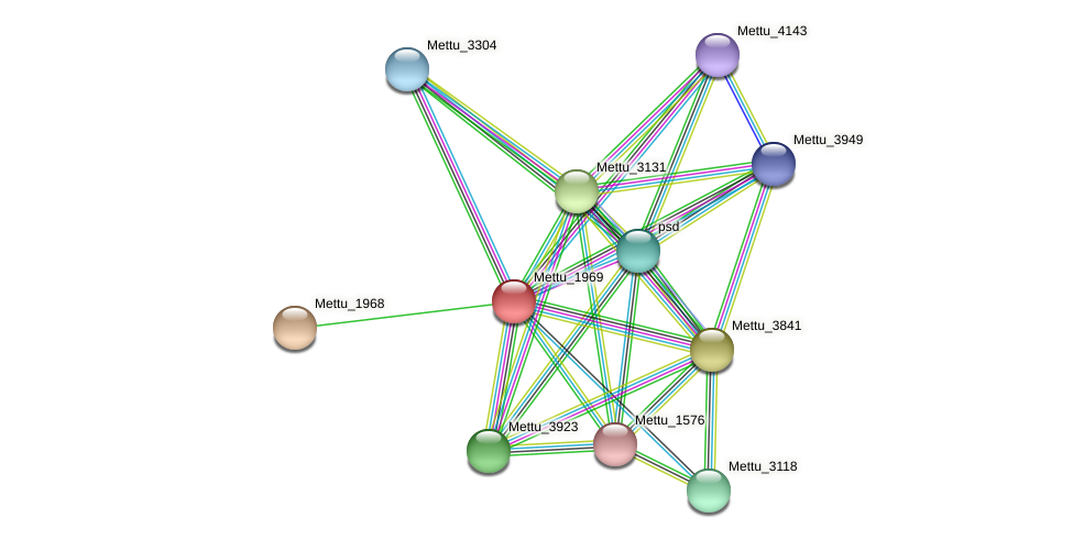Mettu_1969 protein (Methylobacter tundripaludum) - STRING interaction network