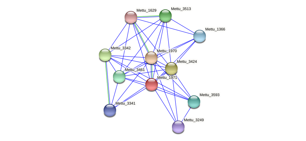 Mettu_1971 protein (Methylobacter tundripaludum) - STRING interaction network