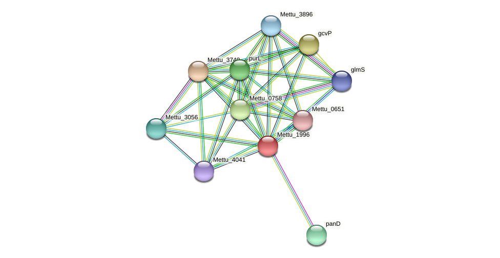 Mettu_1996 protein (Methylobacter tundripaludum) - STRING interaction network