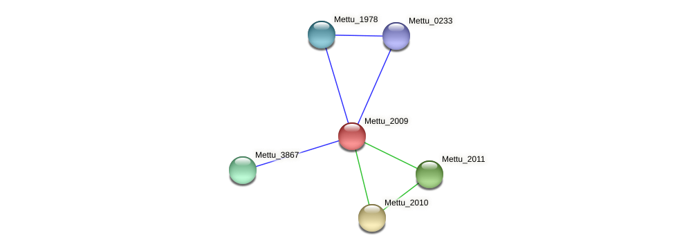 Mettu_2009 protein (Methylobacter tundripaludum) - STRING interaction network