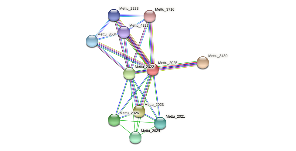 Mettu_2025 protein (Methylobacter tundripaludum) - STRING interaction network