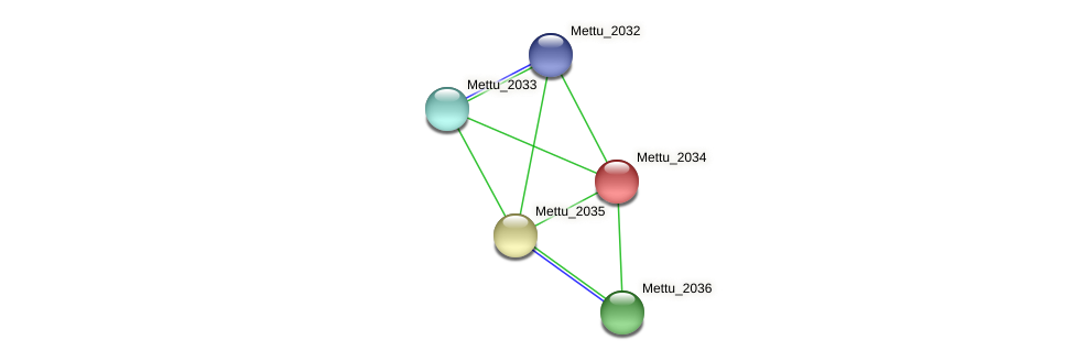 Mettu_2034 protein (Methylobacter tundripaludum) - STRING interaction network