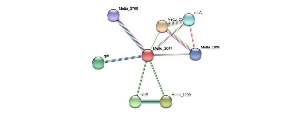 Mettu_2047 protein (Methylobacter tundripaludum) - STRING interaction network