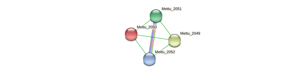 Mettu_2050 protein (Methylobacter tundripaludum) - STRING interaction network