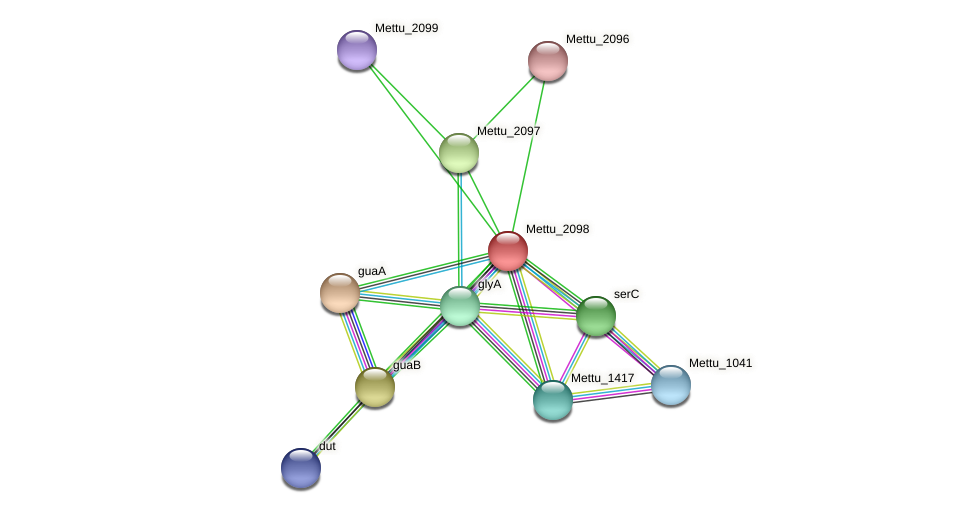 Mettu_2098 protein (Methylobacter tundripaludum) - STRING interaction network