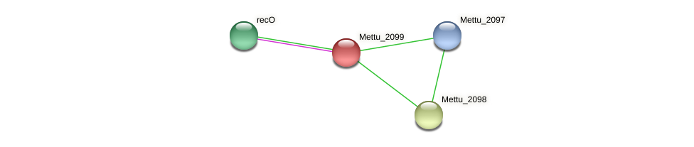 Mettu_2099 protein (Methylobacter tundripaludum) - STRING interaction network