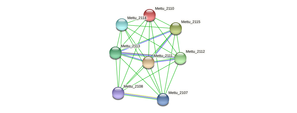 Mettu_2110 protein (Methylobacter tundripaludum) - STRING interaction network