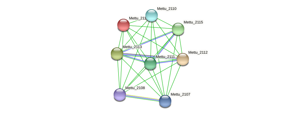 Mettu_2114 protein (Methylobacter tundripaludum) - STRING interaction network