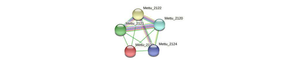 Mettu_2123 protein (Methylobacter tundripaludum) - STRING interaction network