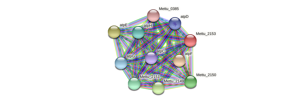 Mettu_2153 protein (Methylobacter tundripaludum) - STRING interaction network