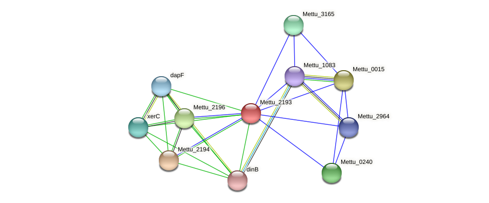 Mettu_2193 protein (Methylobacter tundripaludum) - STRING interaction network